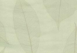 rem cuon van phong hoa van ac2